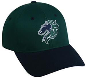 MINOR LEAGUE Charlotte Knights Baseball Cap
