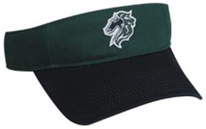 MINOR LEAGUE Charlotte Knights Baseball Visor