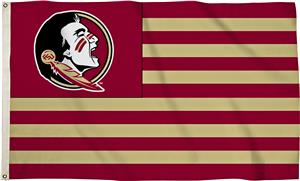 COLLEGIATE Florida State 3' x 5' Flag