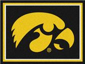 Fan Mats NCAA University of Iowa 8x10 Rug