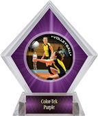 Awards PR1 Volleyball Purple Diamond Ice Trophy