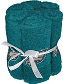 Northwest NFL Eagles Washcloths - 6 pack