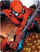Northwest Marvel Spider-Man Web Swing Fleece Throw