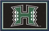 Fan Mats NCAA University of Hawaii 4'x6' Rug
