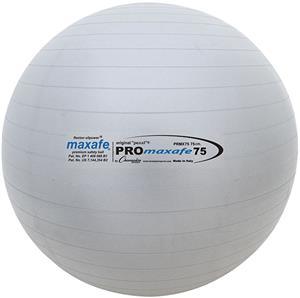 Champion Sports PROmaxafe Training Exercise Balls