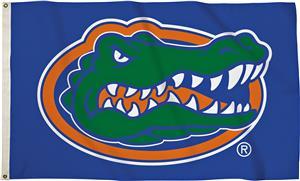 BSI College Florida Blue 3' x 5' Flag w/Grommets