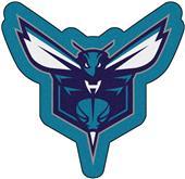 Fan Mats NBA Charlotte Hornets Mascot Mat