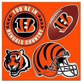 NFL Cincinnati Bengals 4 Piece Magnet Set
