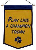 Winning Streak NCAA Notre Dame PLACT Banner