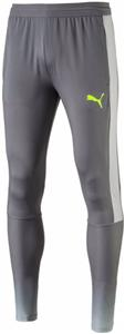 Puma Evotrg Mens Tech Soccer Pants