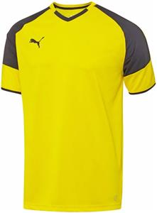 Puma Mens Borussia Short Sleeve Soccer Jersey