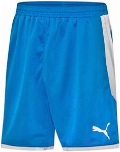 Puma Mens Borussia Soccer Shorts