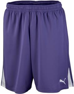 Puma Mens Team Soccer Shorts
