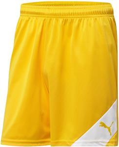 Puma Mens Santiago Shorts