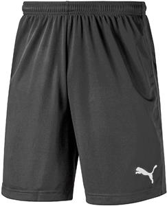 Puma Mens Liga Training Shorts