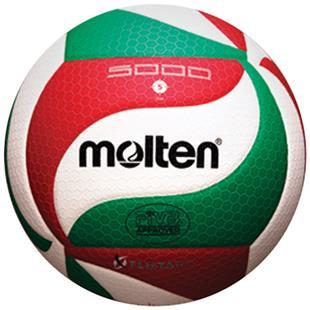 Molten V5M5000/FIVB Approved Volleyballs