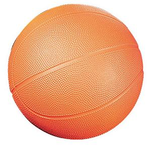 Champion Sports High Density Foam Basketballs