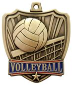 "Hasty Awards 2.5"" Shield Volleyball Medals"
