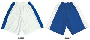 Stock Dazzle Basketball Shorts With Panels