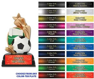 "6"" Soccerball Sport Star Resin Trophies"
