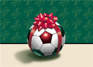 Gift Wrapped Soccer Ball Greeting Cards