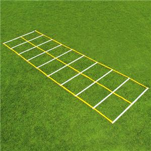 Fisher 15&#39; Double Speed Ladders