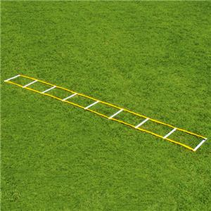 Fisher 12' Single Speed Ladders