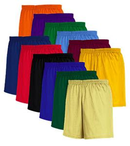 Mini Mesh Athletic Fit Long Shorts