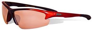Maxx MLB Houston Astros Scorpion Sunglasses