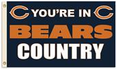 NFL You're in Bears Country 3' x 5' Flag