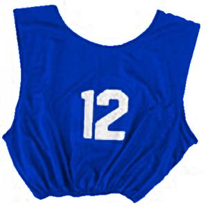 CHAMPION Numbered Soccer Scrimmage Vests (DOZENS)