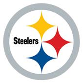 "NFL Pittsburgh Steeler Logo 12"" Die Cut Car Magnet"
