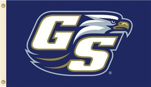 COLLEGIATE Georgia Southern 2nd Logo 3' x 5' Flag