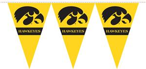 COLLEGIATE Iowa Party Pennant Flags