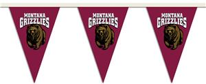 COLLEGIATE Montana Party Pennant Flags