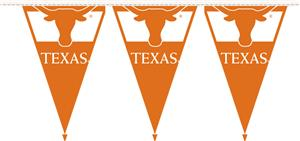 COLLEGIATE Texas Party Pennant Flags