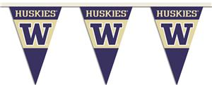 COLLEGIATE Washington Party Pennant Flags