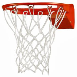 Bison ProTech Breakaway Basketball Goal