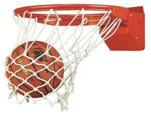 Bison Elite Breakaway Basketball Goal