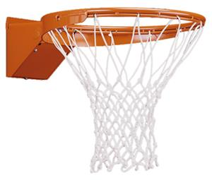 Porter Torq-Flex Moveable Basketball Goal
