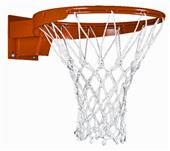 Porter Torq-Flex 180 Adjustable Basketball Goal