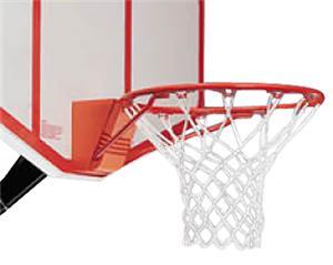 Porter Championship Basketball Flex Goal