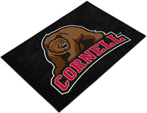 Fan Mats Cornell University Starter Mat