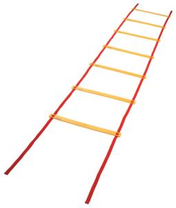 All Goals Soccer Training Agility Ladders