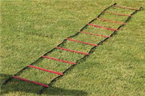 Gill Athletics PowerMax 30&#39; Agility Ladder