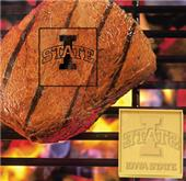 Fan Mats Iowa State University Fan Brands