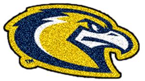 Fan Mats Marquette University Mascot Mat