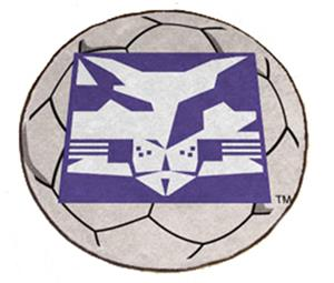 Fan Mats NYU Soccer Ball