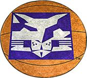 Fan Mats NYU Basketball Mat