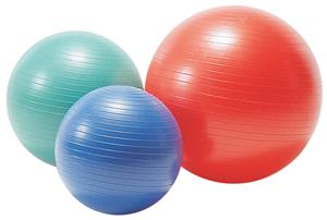 Gill Athletics PowerMax Stability Balls